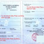 Cấp lại giấy phép lao động (work permit) cho người nước ngoài tại Việt Nam như thế nào?