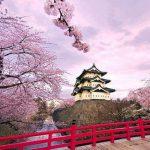 Hướng dẫn điền tờ khai xin visa Nhật Bản chính xác nhất